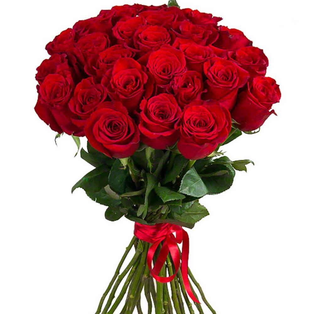 Розницу, цветы с доставкой из эквадора